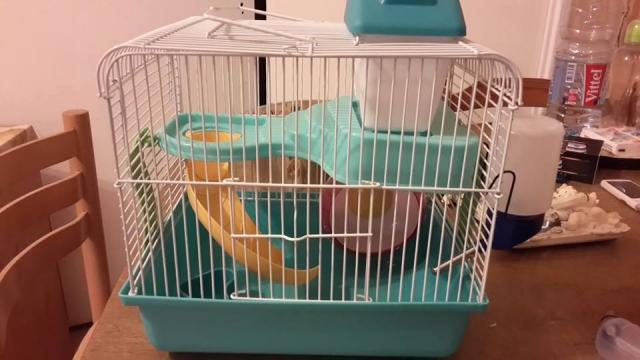 image Cage hamster complete 10e TRES URGENT